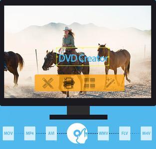 Tipard DVD Creator 5.1.12 Multilingual