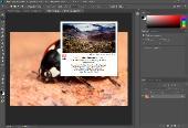 Adobe Photoshop CC 2018 (v19.0) x86-x64 Portable by punsh (with Plugins) (x86-x64) (2017) [Multi/Rus]