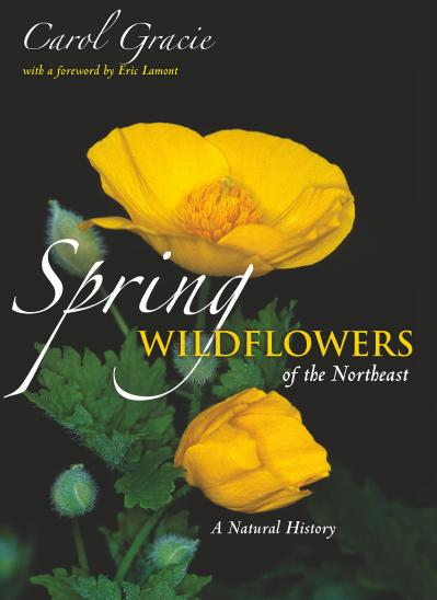 Spring wildflowers of the Northeast a natural history