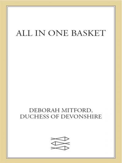 All in One Basket A Memoir