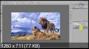 Эффекты для фотошопа. Работа с узорами (2018) PCRec