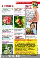 Добрые советы. Цветы в доме №12 (декабрь 2018)