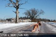 http://i97.fastpic.ru/thumb/2018/1118/4b/_720f6a7f4aa50c516e5fd608f6bd3d4b.jpeg
