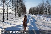 http://i97.fastpic.ru/thumb/2018/1118/ad/_2074ef6e494060b0fd7491646d805dad.jpeg